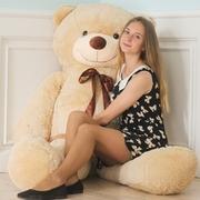 Милый медведь